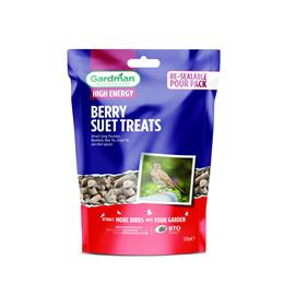 Berry Suet Treats - 550G