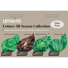 Lettuce All Season Collection Pack