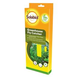 Solabiol Greenhouse Fly Catcher