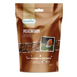 Mealworm 1.2Kg Pouch