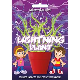 Fun Seeds-Lightening Plant