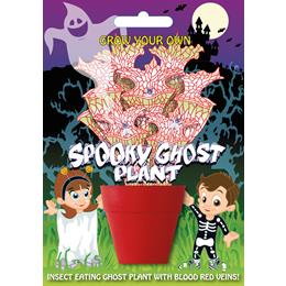 Fun Seeds-Spooky Ghost Plant