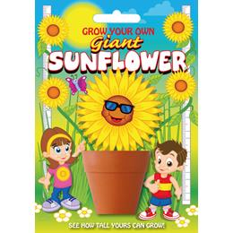 Fun Seeds-Sunflower Plant