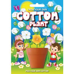 Fun Seeds-Cotton Plant