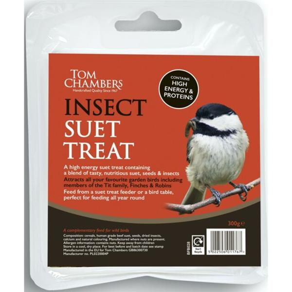 Suet Treat  Insect