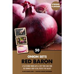 RED BARON ONION SETS 14-21 mm X50