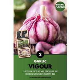VIGOUR GARLIC TOP X2
