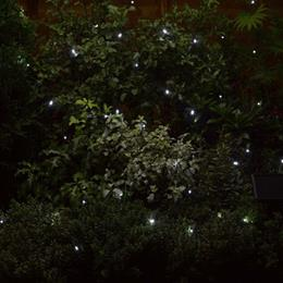 50 Cool White LEDs String Lights
