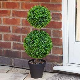 DUO TOPIARY TREE