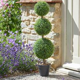 TRIO TOPIARY TREE