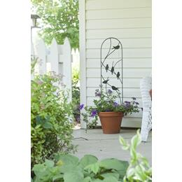Perching Birds Pot Trellis -  Black