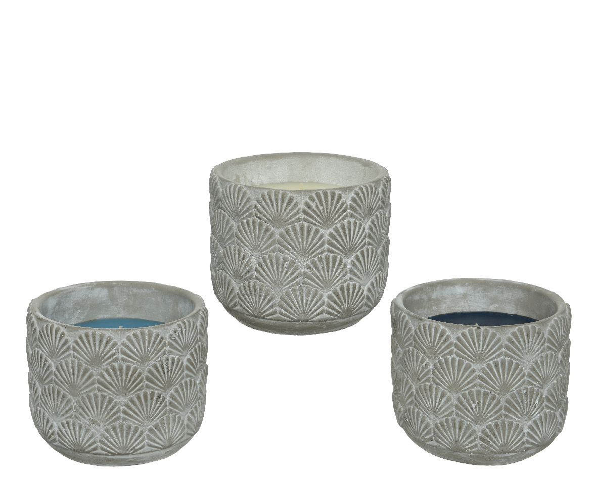 citron wax in cement pot - Assortment of 3 Colours